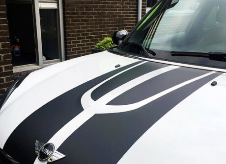 mini paceman stickers